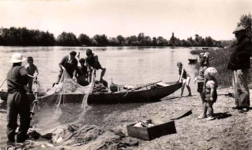 la pêche aux aloses 2